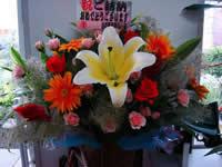マニサや大輪ガーベラを使った華やかなアレンジ