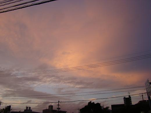 20090613031-higoro.jpg