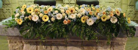 20110129-HINA.jpg